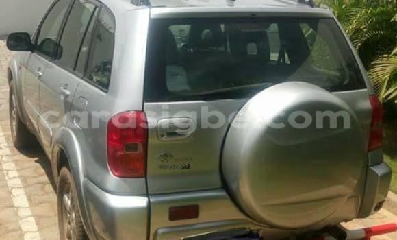 Acheter Voiture Toyota RAV4 Gris à Adawlato en Togo