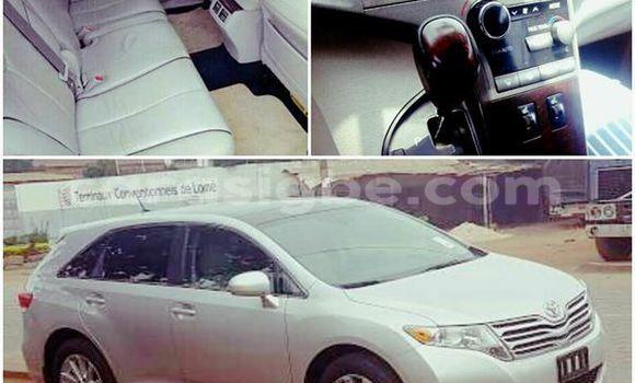 Acheter Voiture Toyota Venza Gris à Adawlato en Togo