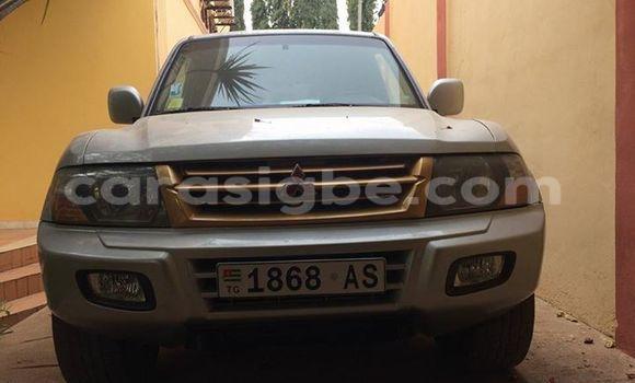 Acheter Voiture Mitsubishi Pajero Gris à Adawlato en Togo