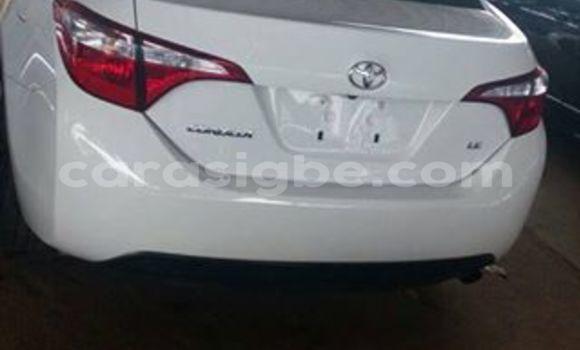 Acheter Voiture Toyota Corolla Blanc à Adawlato en Togo
